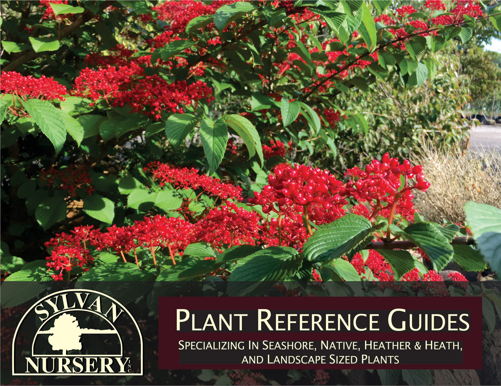 Plant Reference Guide - Click to View